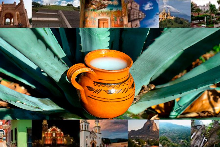 Pulque Hidalgo